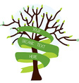 Ecological card with tree and ribbon vector image vector image