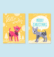 hello winter and merry christmas cards with dogs vector image vector image