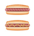 hot dog on white background vector image