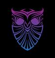 shield owl vector image vector image