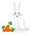 White rabbit sitting isolated on white background vector image