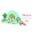 autumn harvesting people fruit trees and basket vector image