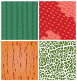fruit texture set vector image vector image