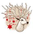 holiday card deer head vector image vector image
