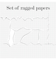 set lacerated papers vector image