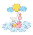 stork with cradle vector image vector image
