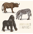 African Animals set3 vector image