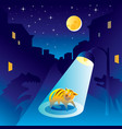 frightened kitten at the night of the city vector image