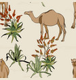 savanna camel in desert pattern cartoon wild vector image