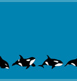 seamless border graphical killer whale vector image vector image