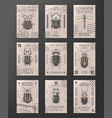 vintage colored insects stamps set vector image vector image