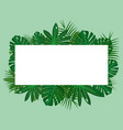 green tropical leaves on green background with vector image