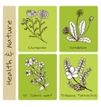 Handdrawn Set - Health and Nature vector image vector image