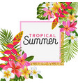 hello summer floral poster tropical exotic flowers vector image