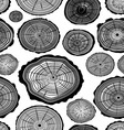 pattern of wood ring vector image