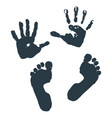 imprint of children s palms and feet vector image