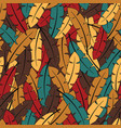 colorful feathers autumn colors vector image vector image