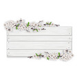 empty white wooden sign with blooming tree branch vector image vector image