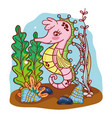 tropical seahorse animal with seaweed plants vector image