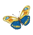 butterfly with colorful wings vector image