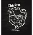 chicken cuts template menu design for restaurant vector image
