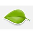 Green Leaf Sticker Design template vector image