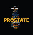 men s guide to prostate problems text background vector image vector image