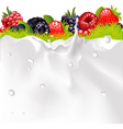 Milk Splash Background Fruit Berries And green vector image vector image