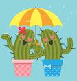 Rain Cactus vector image vector image