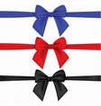 realistic set of multicolored bows isolated on vector image vector image