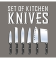 set of kitchen knives vector image