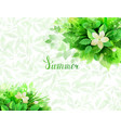 summer background with composition of branches vector image vector image