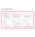 cannabielsoin cbe with structural formulas vector image vector image