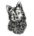 dog pet hand drawn realistic vector image vector image