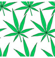 cannabis leaf pattern vector image
