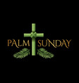 christian palm sunday cross theme vector image vector image