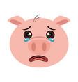 crying pig emoji kawaii vector image