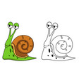 educational coloring book-snail vector image vector image