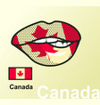 lips with national flag vector image vector image