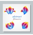Luxury image logo Rainbow Abstract Flowers Set vector image