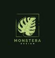 monstera logo design template vector image