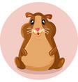 cute little hamster cartoon mascot vector image