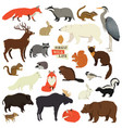 forest wildlife isolated objects animals vector image