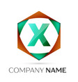 letter x symbol in the colorful hexagonal vector image vector image