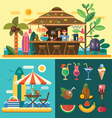 Summer vacation in a tropical country vector image vector image