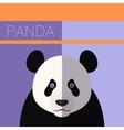 Panda flat postcard vector image