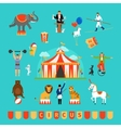 Circus and fun fair elements vector image vector image