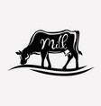 feeding cow stylized silhouette vector image