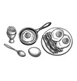 fried and soft boiled eggs vector image