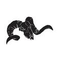 skull herbivorous vector image vector image